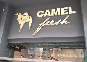 camel_fresh-(1)